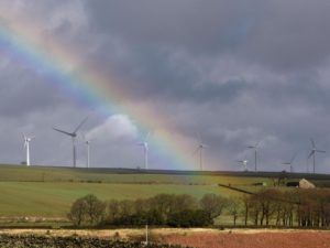 UK Greenest Year Ever