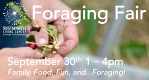 Foraging Fair 2018